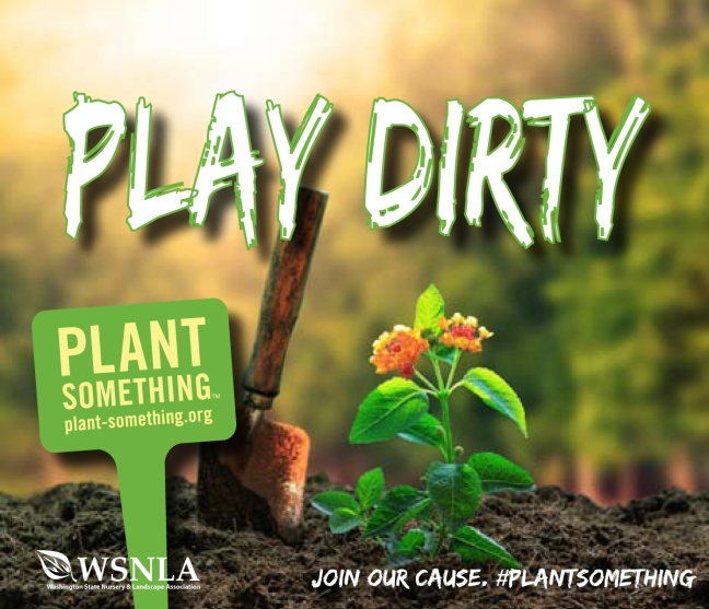 Plant Something - Play Dirty